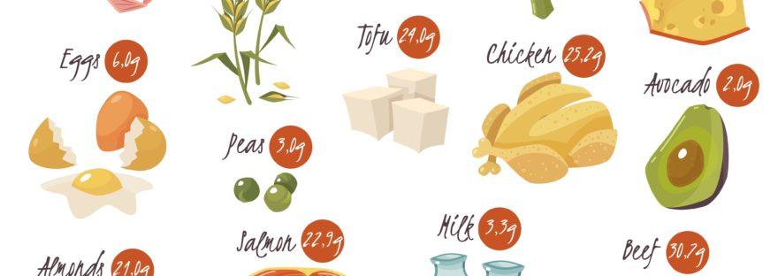 alimentazione proteine